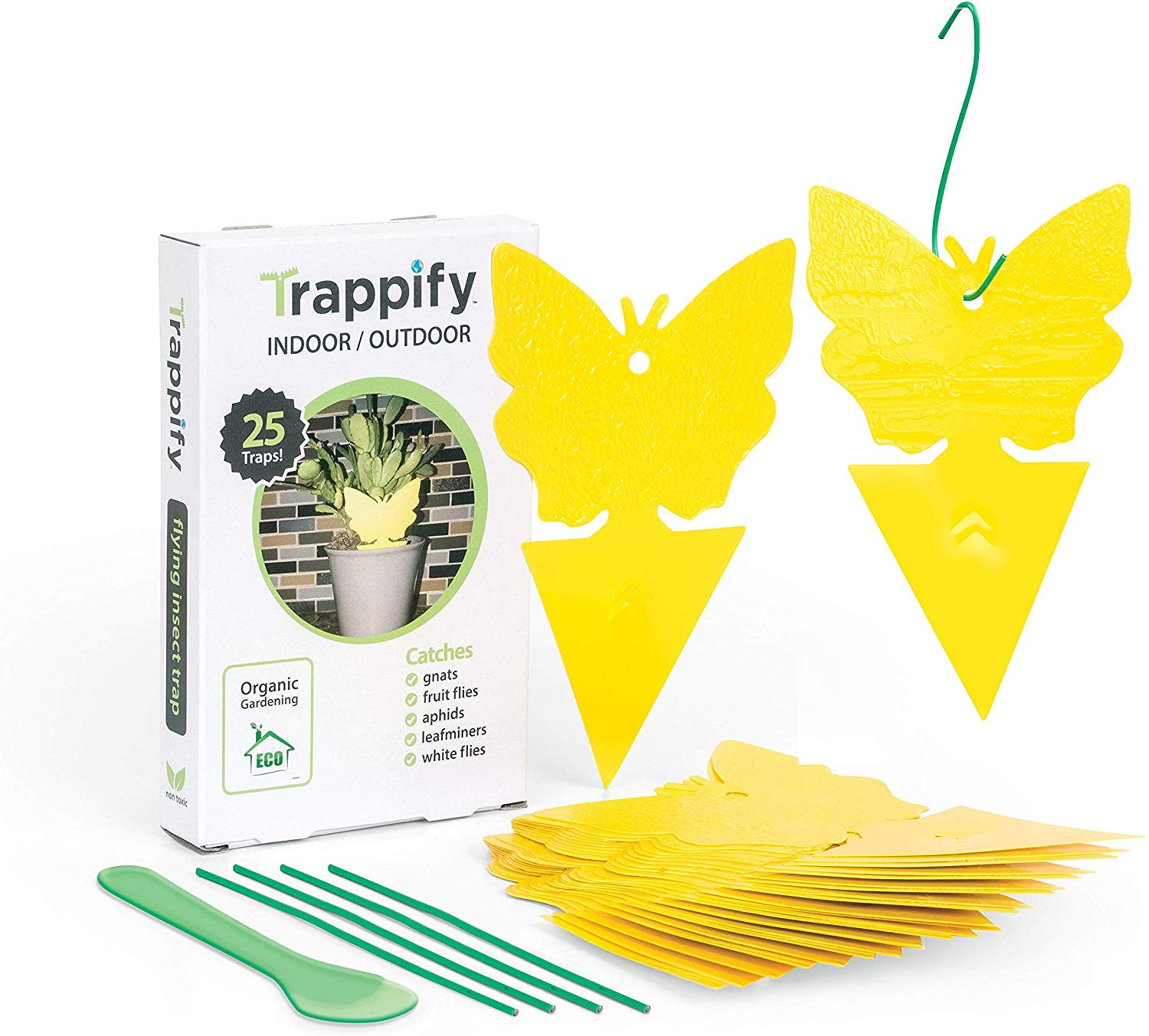 Trappify Sticky Fruit Fly and Gnat Trap
