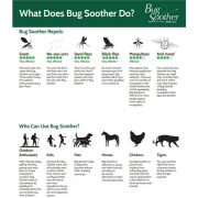 Gnat and Insect Deterrent with Essential Oils
